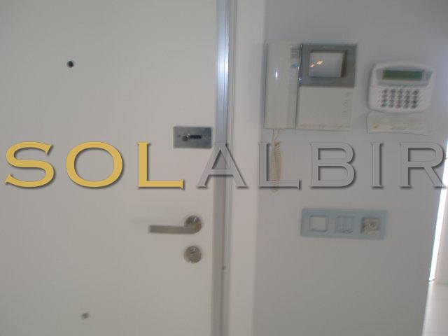 Security door and video