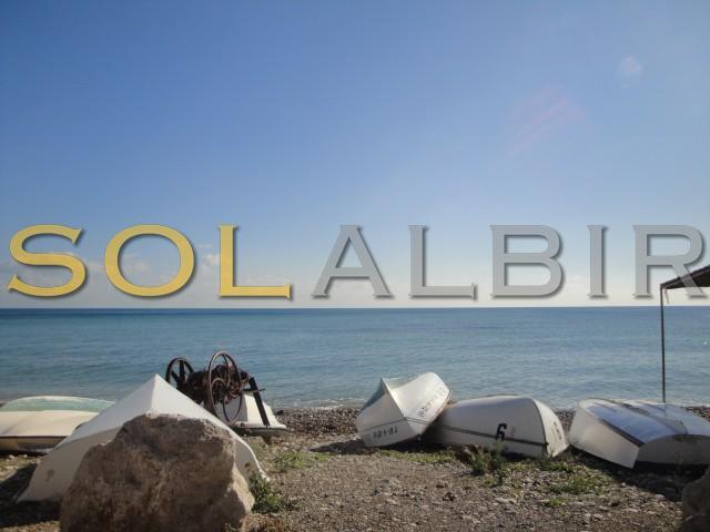 Beach La Olla