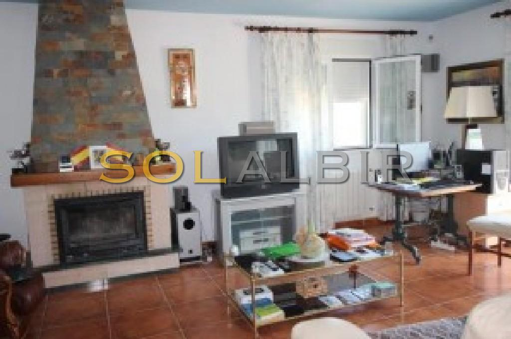 Living room  whit fireplace and access to the balcony