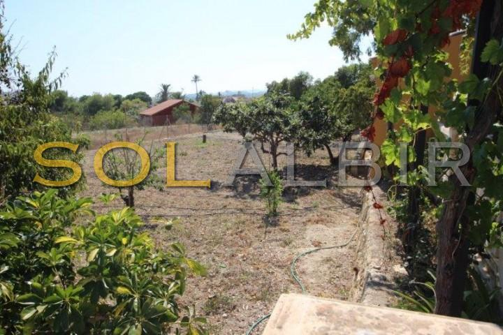 Plot of 1,200 m2 with fruit trees