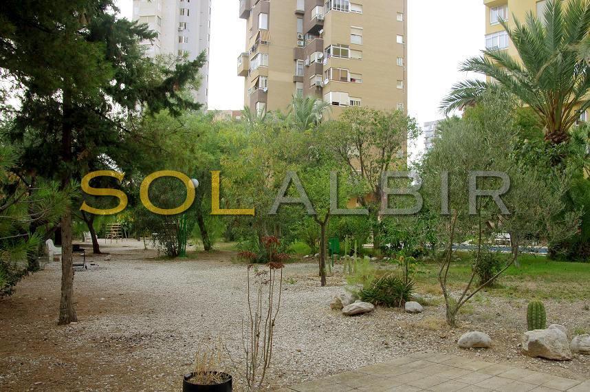 Play area and garden