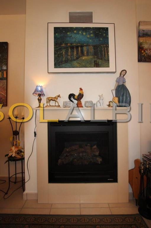 The gas fireplace in the living room