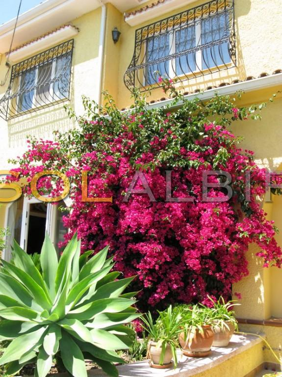 The nice and flowering facade