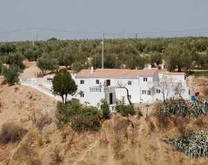 Property Cortijo Woody
