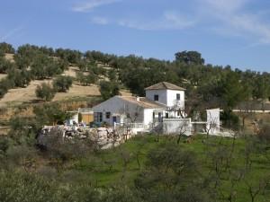 Property Cortijo del Durazno