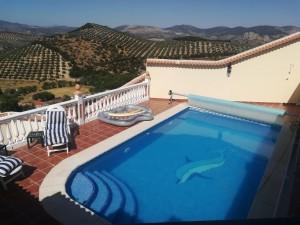 Property Villa Dolphin